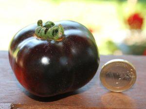 Blue Bayou Tomate reif