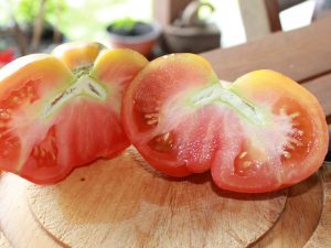 Reife Bosque Blue Tomate halbiert