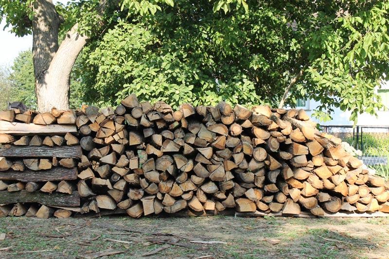 10 Ster Brennholz Eiche