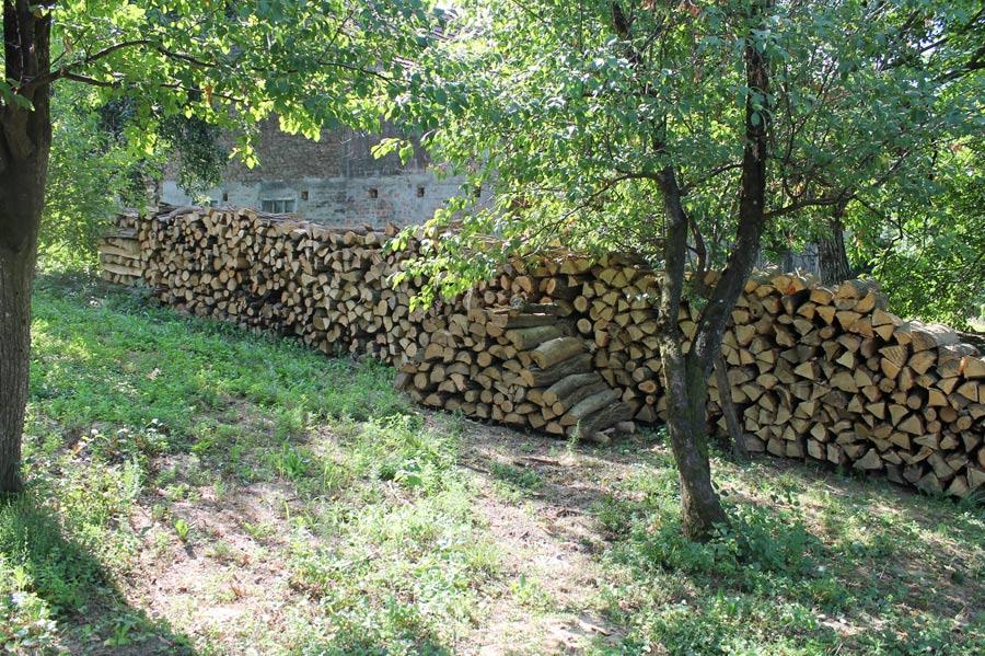 Holzstapel im Garten für die Weiterverarbeitung zum Brennholz