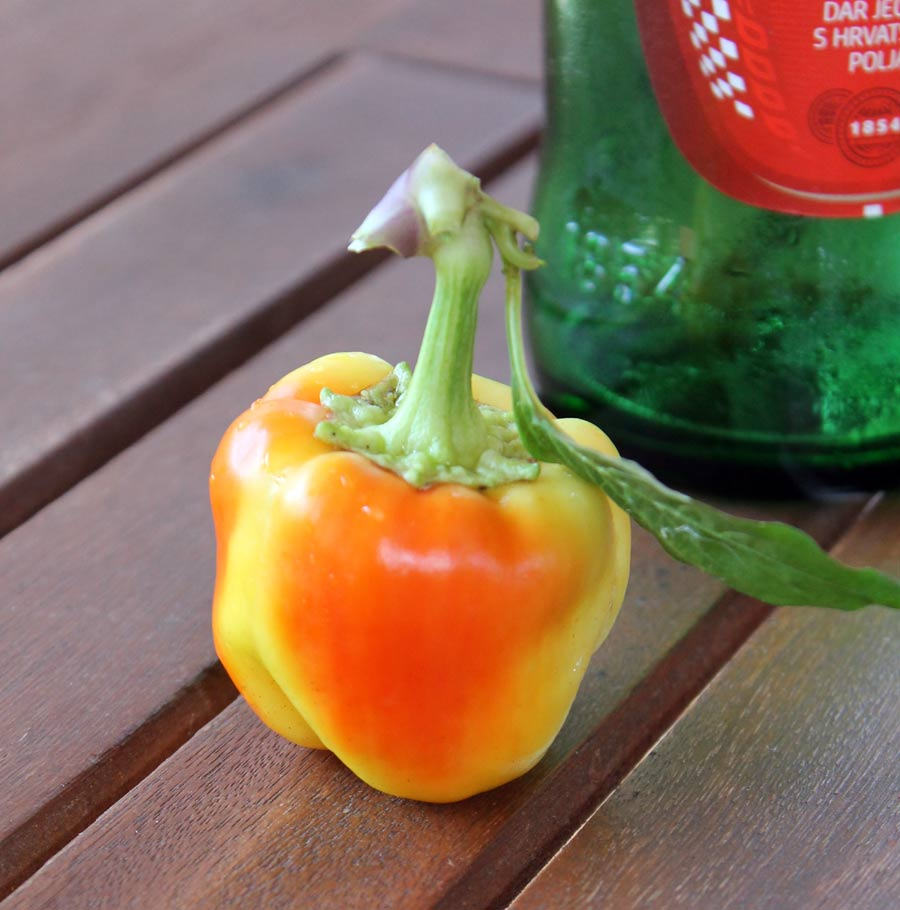 Kleine Paprika