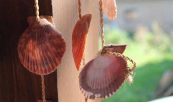 Muschelkette