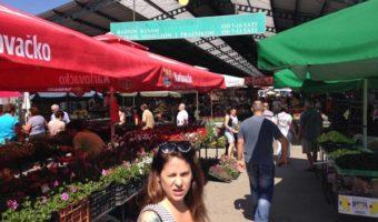 Bauernmarkt in Bjelovar