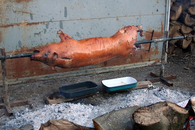 Ein junges Schwein am Spieß wird an Weihnachten im Hof in Kroatien am offenen Feuer gegrillt.