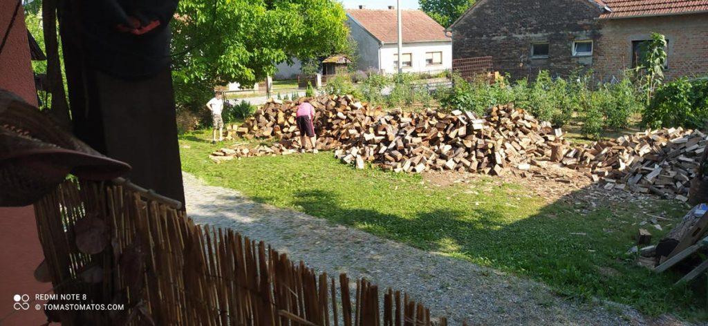 Holzspalter bei der Arbeit