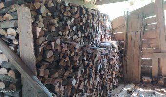 Brennholz Kroatien